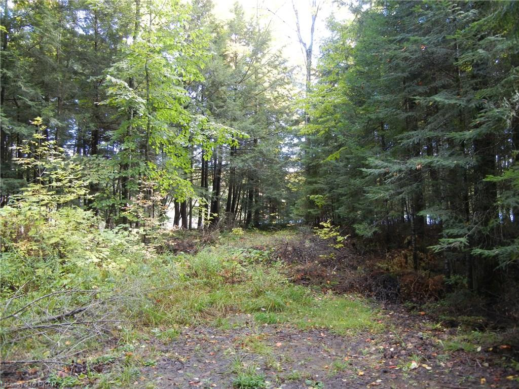 40 ACRES WINTER'S BAY ESTATES Road, North Kawartha Township, Ontario (ID 128949)