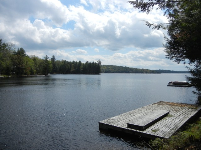 1198 Anstruther Lake Wao, North Kawartha Ontario, Canada